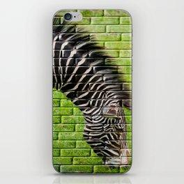 Zebra on the Wall iPhone Skin