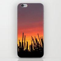Catching fire iPhone & iPod Skin
