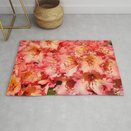 Coral colored rhododendrons Rug