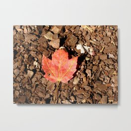 Only One Metal Print