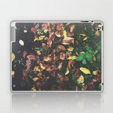 Among the leaves Laptop & iPad Skin