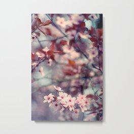 Spring flush Metal Print