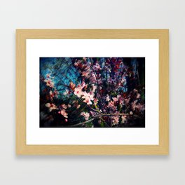 Cherry Blossom Nightmare Framed Art Print