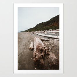 Driftwood on the Beach Art Print