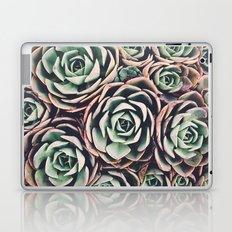 Succulent IV Laptop & iPad Skin