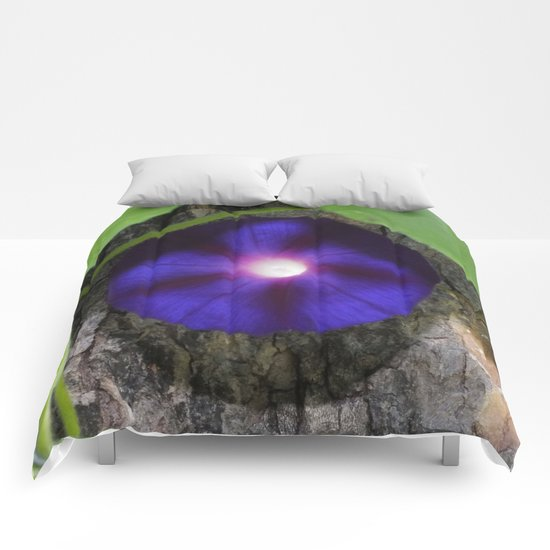Midnight Purple Morning Glory Comforters