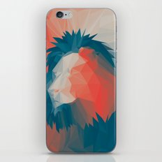 Courage 2 iPhone & iPod Skin