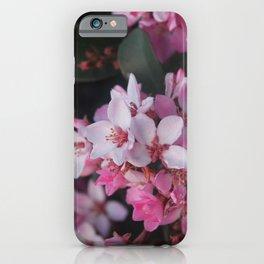 India Hawthorne Blooms iPhone Case