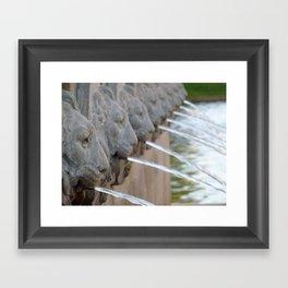 Lion Water Framed Art Print