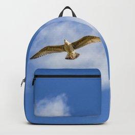 Gull In The Blue Sky Backpack