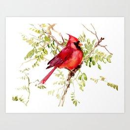 Northern Cardinal, cardinal bird lover gift Art Print