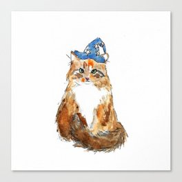 Maine Coon Cat Wizard Canvas Print