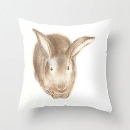 Christopher Rabbit Throw Pillow