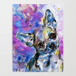 Chihuahua No. 1 Poster