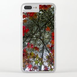 Beautiful Trees / 18 Clear iPhone Case