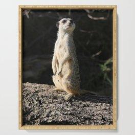 Meerkat Serving Tray