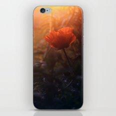 Summer Poppy iPhone & iPod Skin