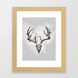 King of the Forrest - Trophy Buck - Deer Framed Art Print