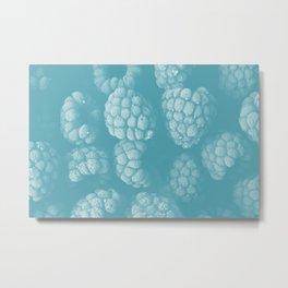 Raspberries in blue Metal Print