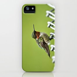 Hummingbird on a Fence iPhone Case