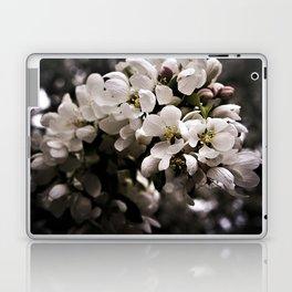 Apple Blossoms 3 Laptop & iPad Skin