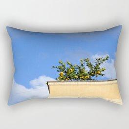 Fruits of Rome Rectangular Pillow