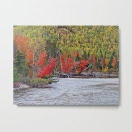 River's Edge in the Fall Metal Print