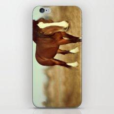 I dream of draft iPhone & iPod Skin