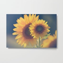 Sunflower 02 Metal Print