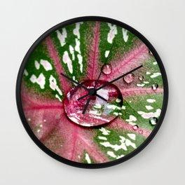 Caladium Calypso - The Garden Series Wall Clock