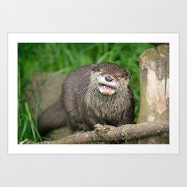 Smiling Otter Art Print