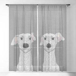 Cream Iggy Sheer Curtain