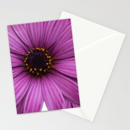 Purple Marigolds Rose Stationery Cards
