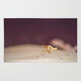 Gritty Mantis Rug