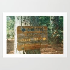 Blue Trail, Yellow Trail Art Print