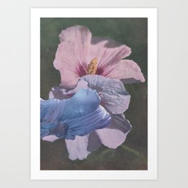 16df096392 Oleander Art Prints