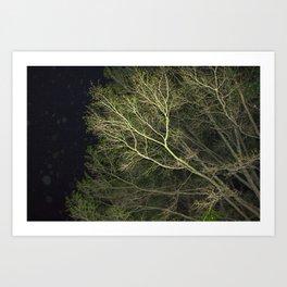 En-tree-ging Art Print