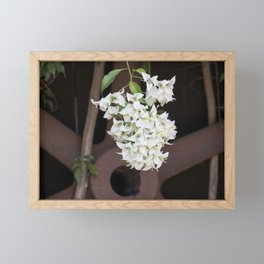 Bougainvillea and Wagon Wheel Framed Mini Art Print