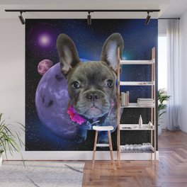 Dog French Bulldog and Galaxy Wall Mural
