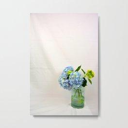 Hydrangea Experiment Metal Print