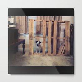 Puppy jail. Metal Print