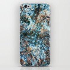 look up 02 iPhone & iPod Skin