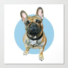 French Bulldog blue spot. Canvas Print