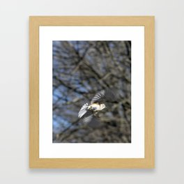 Bird in Flight with Blue Sky and Trees Framed Art Print