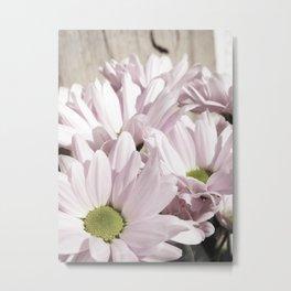 Pastel Pinks Metal Print