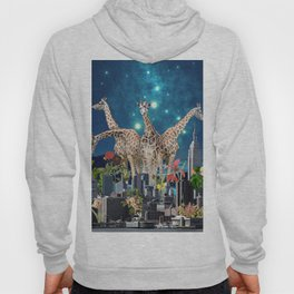 TOMORROWLAND Hoody