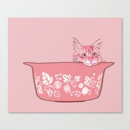 Cat in Bowl #1 Canvas Print