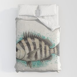 """Sheepshead Splash"" by Amber Marine ~ Watercolor Fish Painting (Copyright 2016) Comforters"