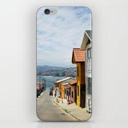 Valp iPhone Skin