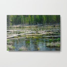 Fall River in Shades of Green Metal Print